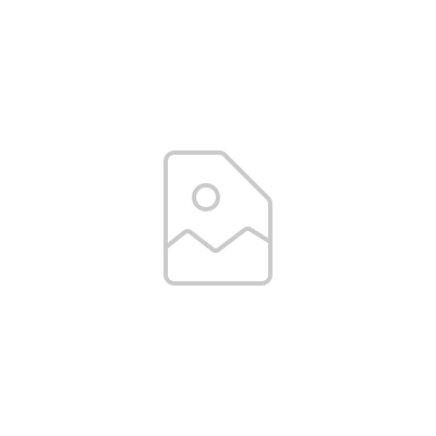 The Dead Weather - I Cut Like a Buffalo (Single 7