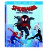 Spider-Man: Into the Spider-Verse (BR + DVD Import)